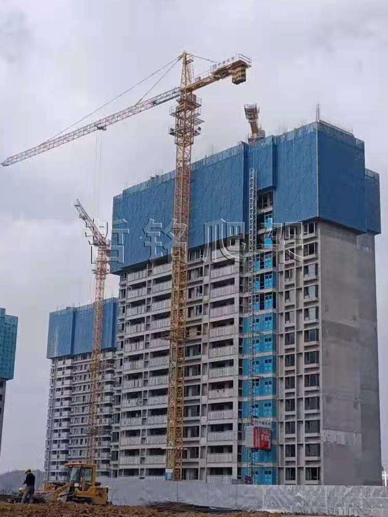 安全建筑爬架网